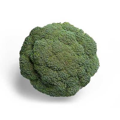 Brócolis Híb. Odissey