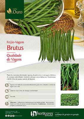 Folheto Feijão-vagem Brutus