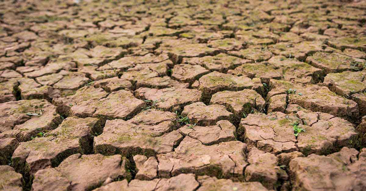 O que é degradação do solo?