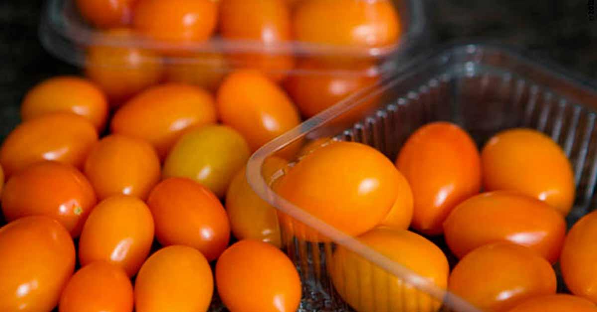 Tomate Híb. Canarinho. Mais cor e sabor para sua salada.