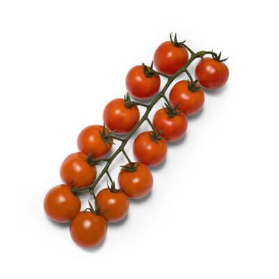 Tomate Híb. Penca Rita DRC 107