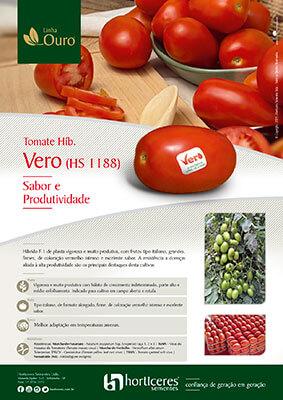 Folheto Tomate Híb. (HS 1188)