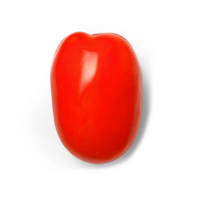 Tomate Híb. Vitalino 32